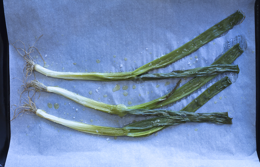 Roasted scallions, ready to chop