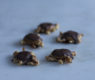 Chocolate Turtles with Homemade Natural Caramel